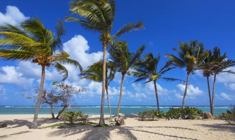 Jibacoa, Cuba - Risskov Rejser