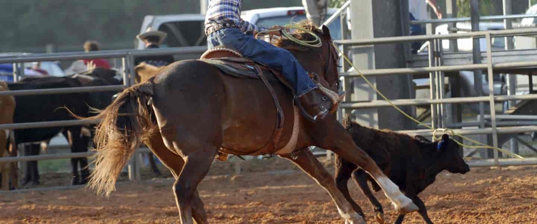 Rodeo i Texas, USA