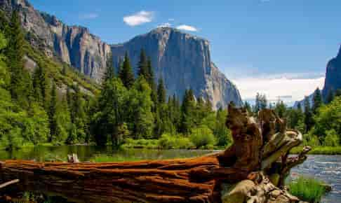 Yosemite National Park i Californien
