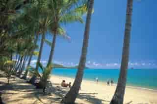 Den dejlige strand ved Palm Cove - Albanien