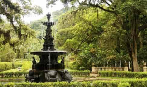 Den berømte botaniske have i Rio - Risskov Rejser