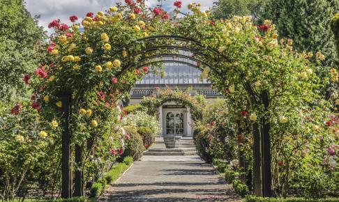 Den botaniske have - Garden City - i Christchurch - Risskov Rejser