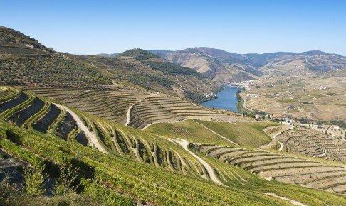 Douro-dalen der er et kæmpe vinområde