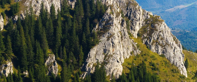 Kopaonik national park, Serbia - Risskov Rejser