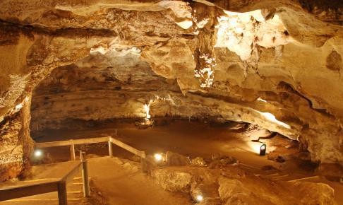 Tunnel i Naracoorte Caves, Australien - Risskov Rejser