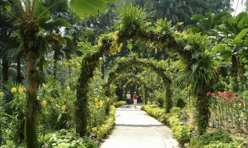 Oplev Den Botaniske Have i Singapore på vores rundrejse til Australien