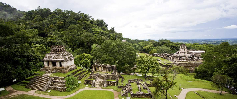 Palenque i Mexico - Risskov Rejser