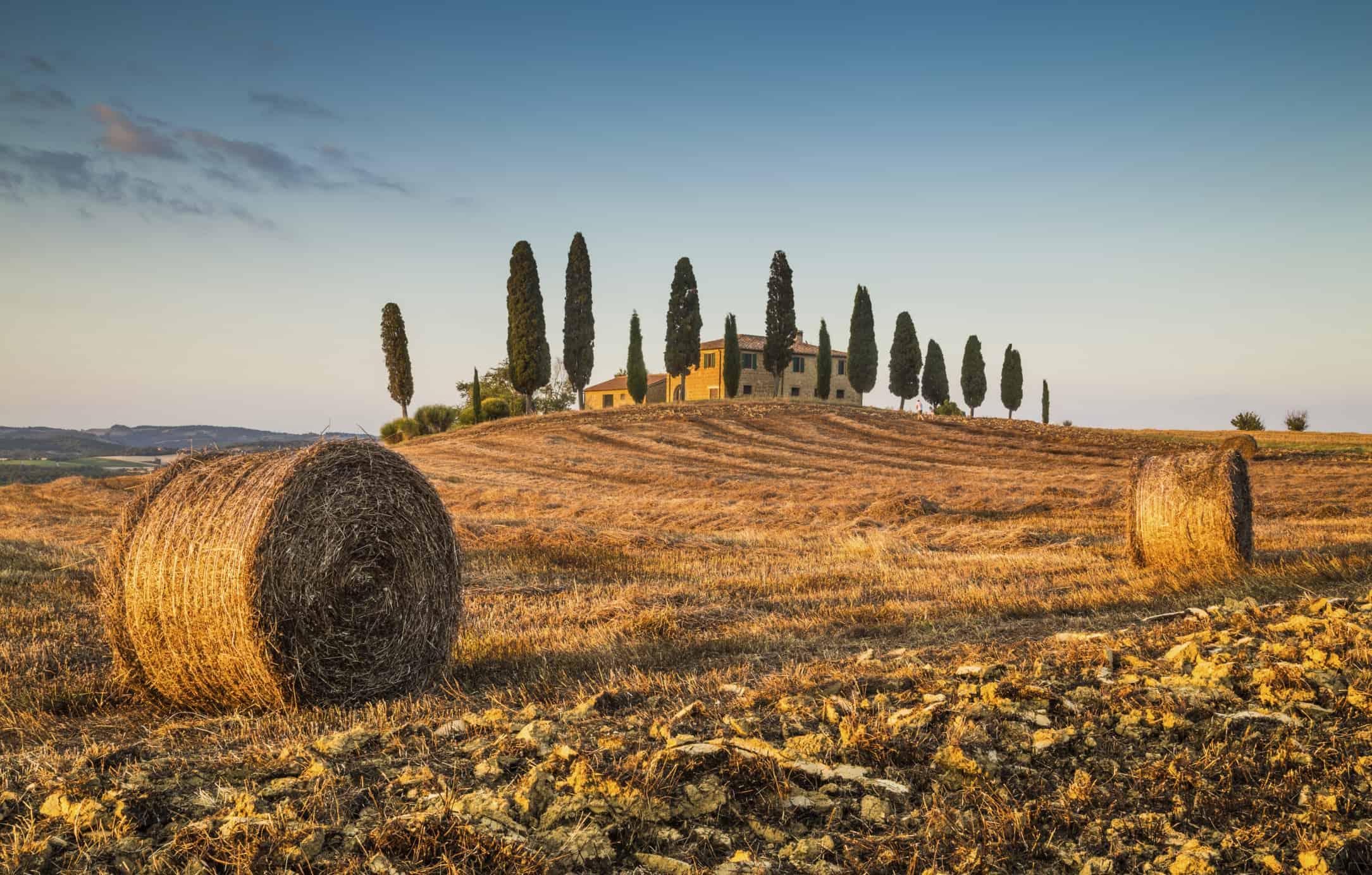 Et typisk landskab i Toscana - oplev det på en rundrejse