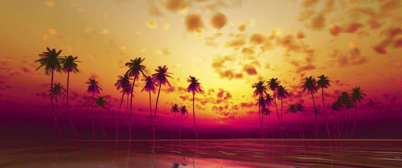 Smuk solnedgang på Hawaii - Risskov Rejser