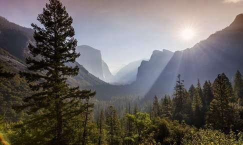 Udsigt ud over Yosemite National Park, USA
