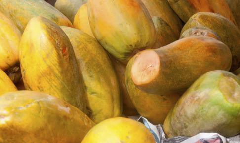 Papaya frugter til salg på markedet i San Jose, Costa Rica - Risskov Rejser