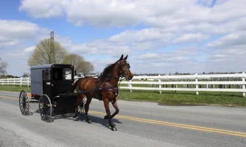 Amish køretøj