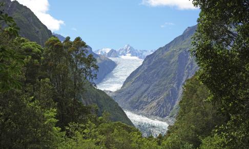 Franz Josef-gletstjeren - Risskov Rejser