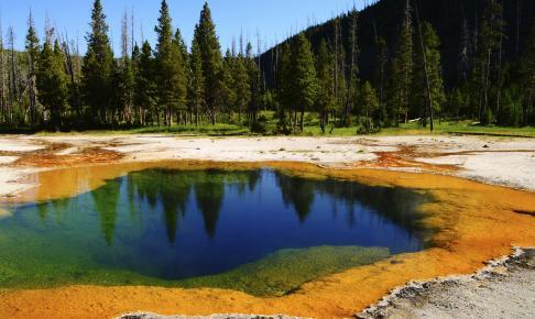 Yellowstone - Risskov Rejser