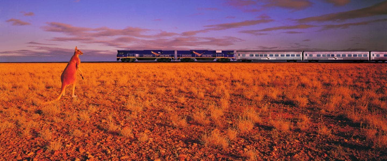 Indian Pacific togturen tværs over Australien