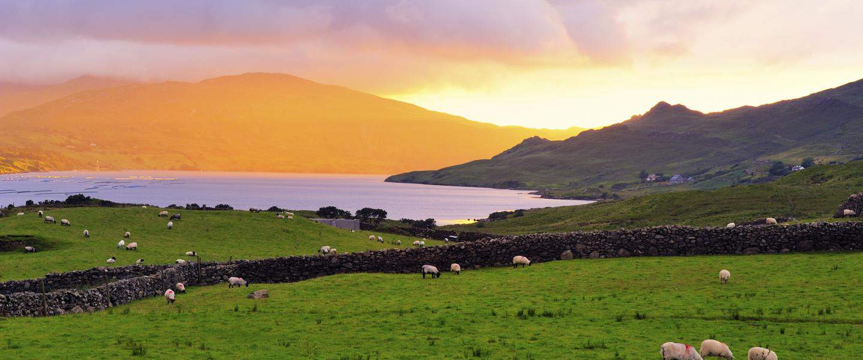 Killary Harbour - Irland - Risskov Rejser