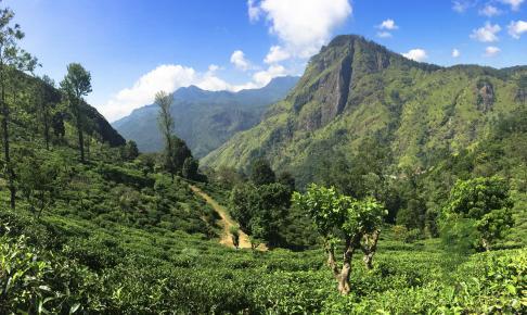 Sri Lanka scenery - Risskov Rejser