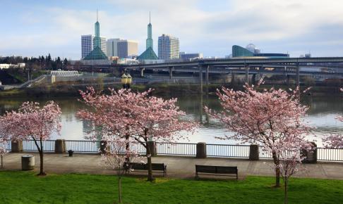 Portland i foråret - Risskov Rejser