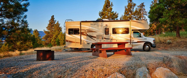 Motorhome Road Bear RV USA