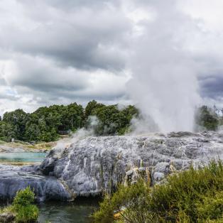 Te Puia i Rotorua - Risskov Rejser