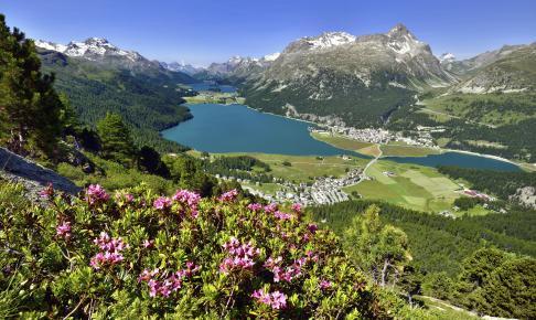 Betagende dal i Schweiz - Risskov Rejser