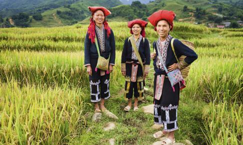 Vietnam minoritet