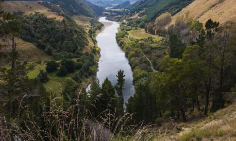 Whanganui-floden - New Zealand - Risskov Rejser