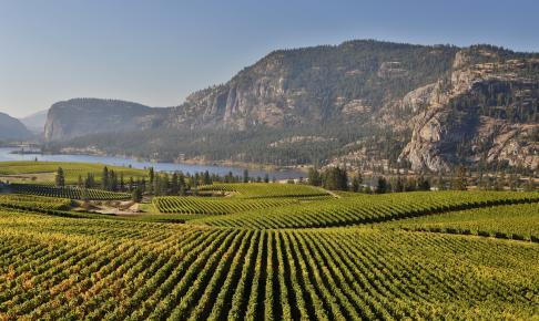 Okanagan Lake and Valley