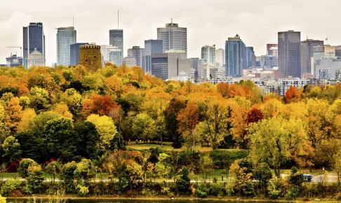 Skyskrabere i Montreal i efteråret - Risskov Rejser
