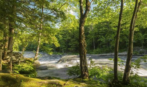 Kejimkujik National Park - Risskov Rejser