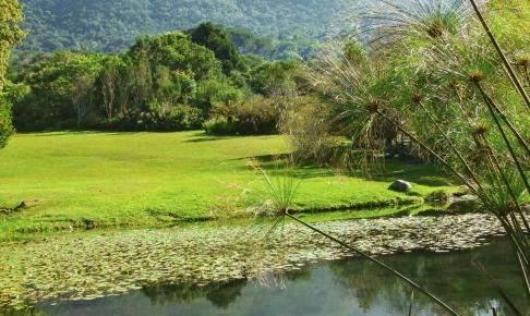 Kirstenboschs National Botanical Garden - Risskov Rejser