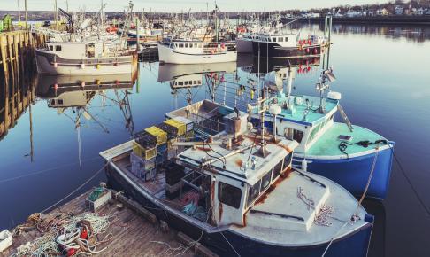 Digby i Nova Scotia - Risskov Rejser