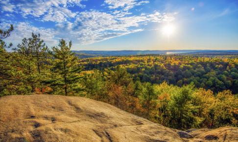 Et view over Algonquin Park - Risskov Rejser