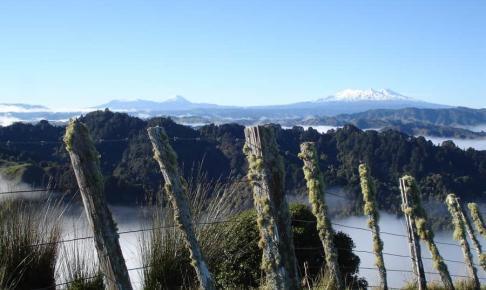 Blue Duck Station i New Zealand - Risskov Rejser