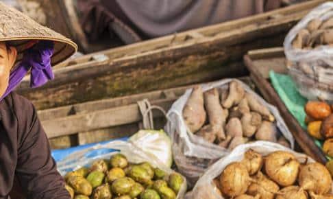 Det flydende marked Cai Rang - Risskov Rejser