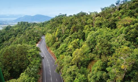 Kør gennem regnskoven - Risskov Rejser
