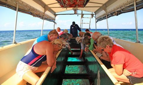 Great Barrier Reef på den australske østkyst
