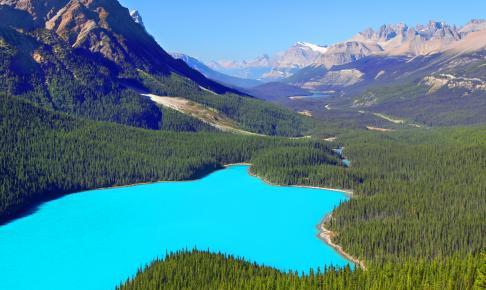 Den smukke Peyto-sø ved Banff