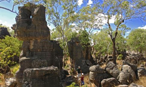 Litchfield National park i Northern Territory