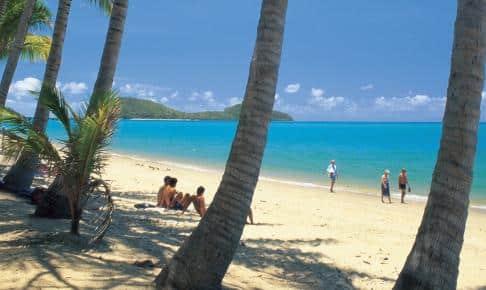 Palm Cove Beach - Risskov Rejser