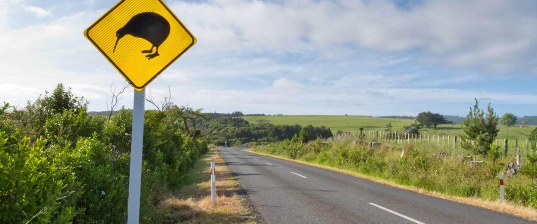 Kør Selv Ferie i New Zealand - Risskov Rejser