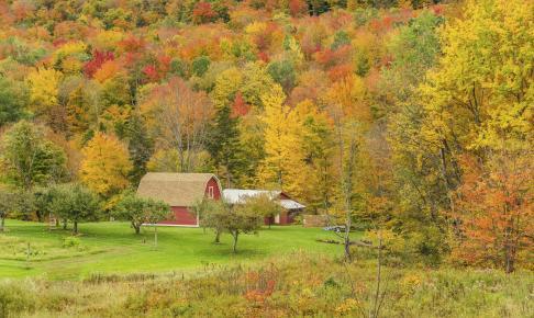 Rural Vermont i efteråret - Risskov Rejser