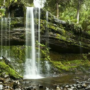 Russell Falls på Tasmanien