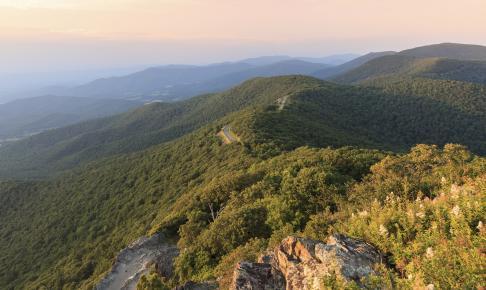 Skyline Drive og Shenandoah National Park - Risskov Rejser