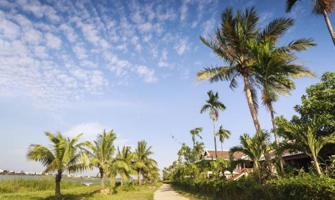 Sti ved Thu Bon-området - Risskov Rejser