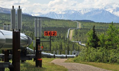 Alaska pipeline - Risskov Rejser