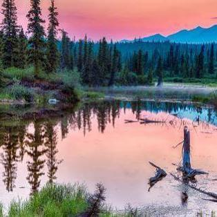Vildmarkseventyr i Alaska og Yukon - Risskov Rejser