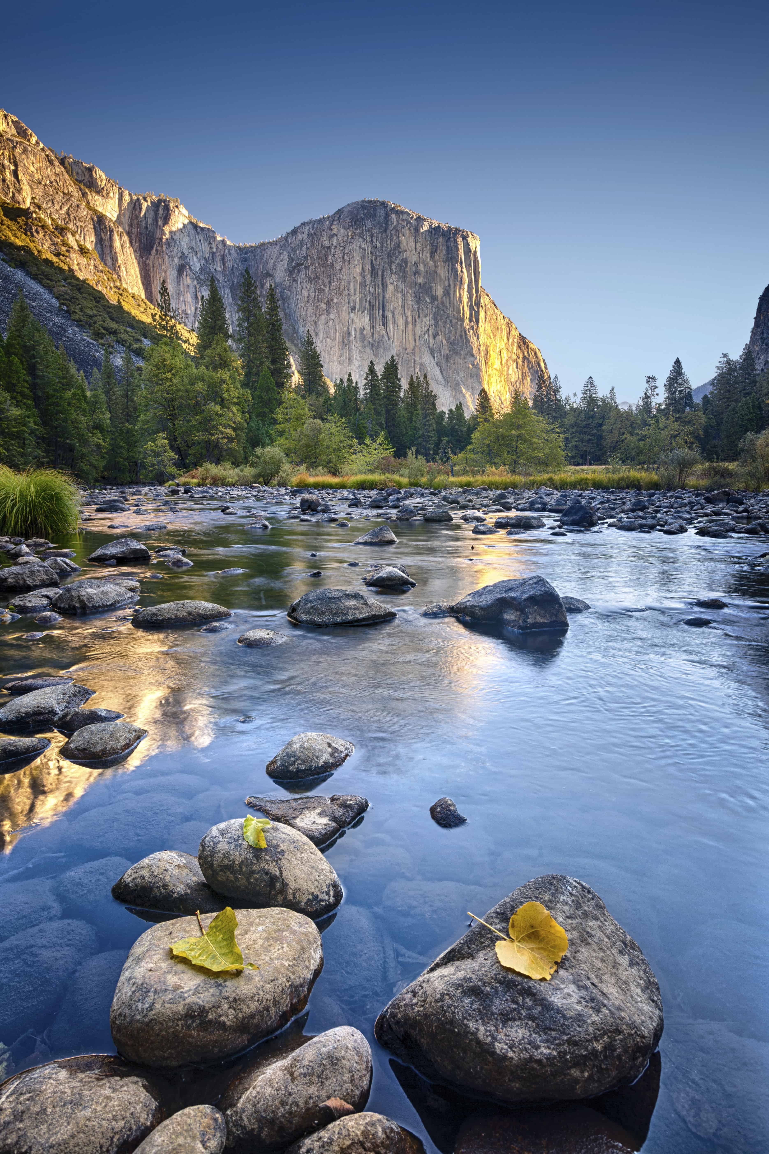 Yosemite nationalpark - Risskov Rejser