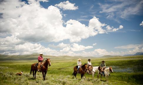 Cowboys på heste - Risskov Rejser