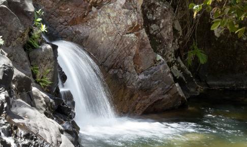 Vandfald i Eungella National Park - Risskov Rejser